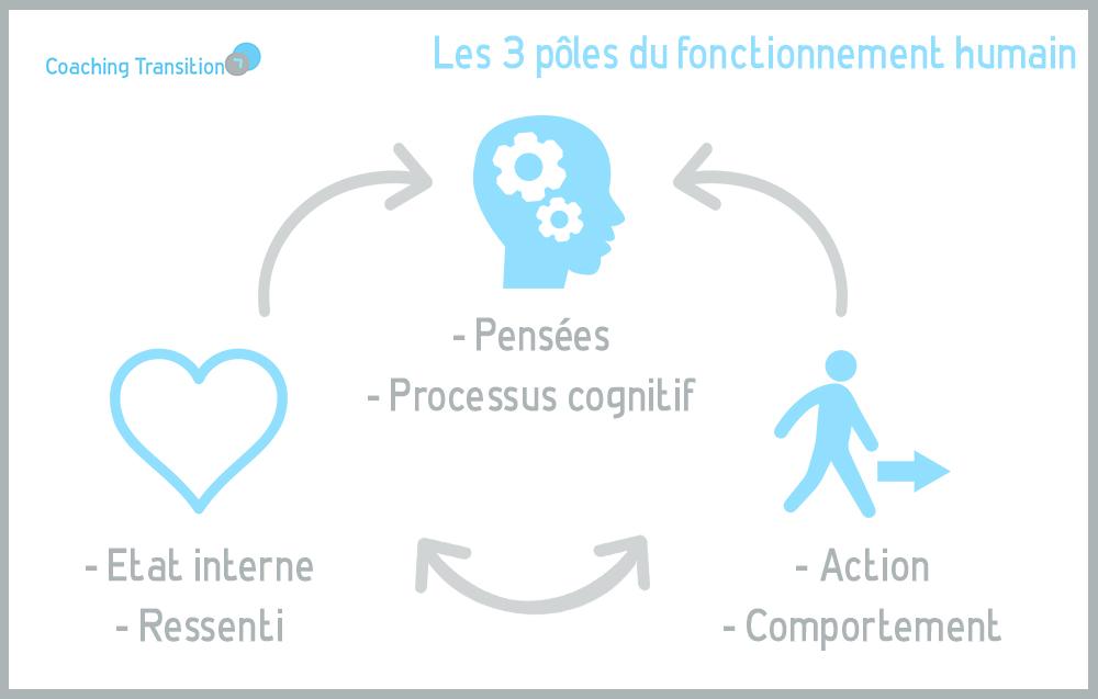 qu'est ce que le coaching? les 3 poles du fonctionnement humain